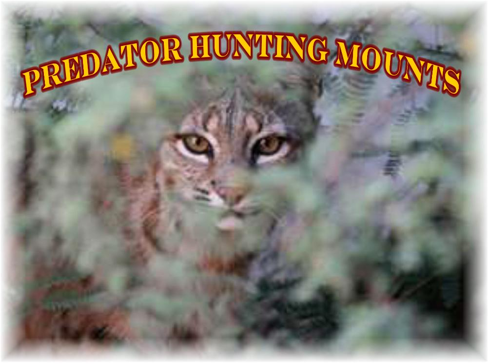 Predator Hunting Logos Predator Hunting Mounts